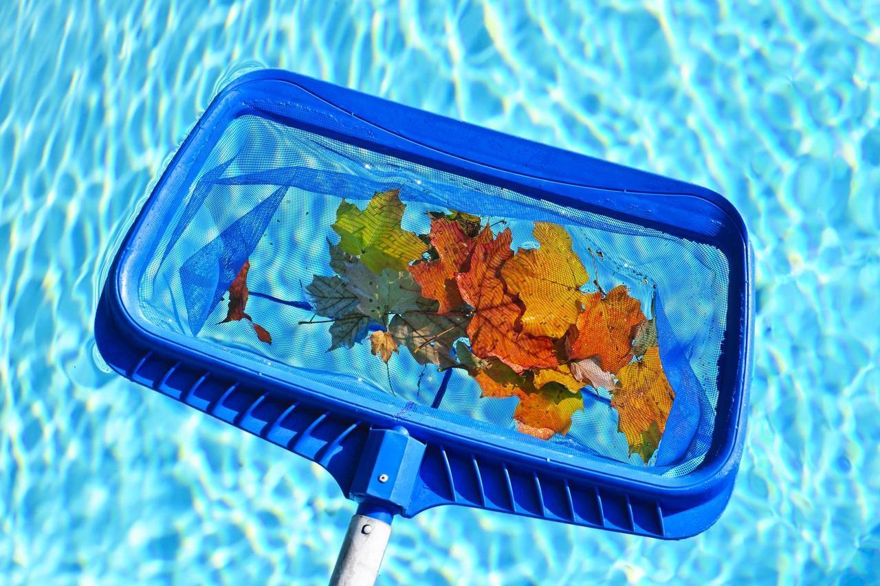 Бассейн: уход или как содержать бассейн в чистоте